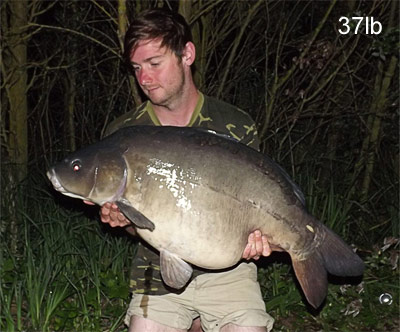 37lb carp from Abbey Lakes in France