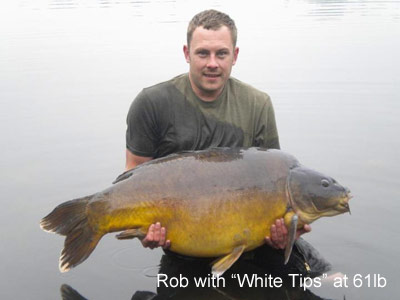 White Tips From Abbey Lakes